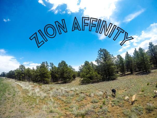 Zion Affinity!